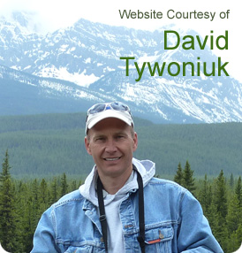 Website Courtesy of David Tywoniuk